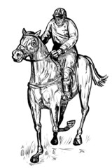 horse and jockey winning race racing