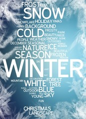 Winter (XtravaganT Abstract Design)