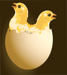 Two chickens come from an egg.