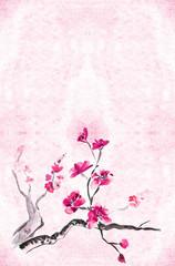 plum blossomm