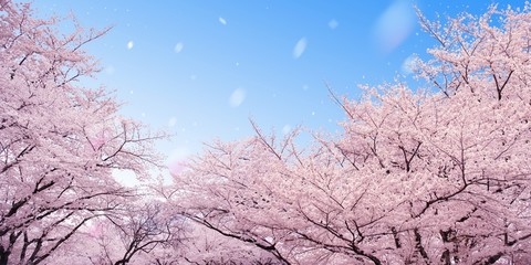 Ingelijste posters Lichtroze 桜