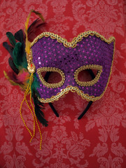 carnival mask on fabric 8