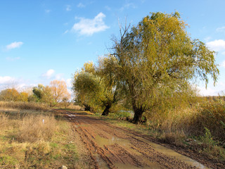 A dirt road winds through the Autumn colors