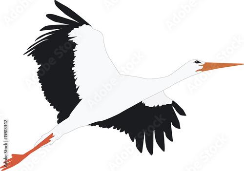 Fliegender Storch Stockfotos Und Lizenzfreie Vektoren Auf Fotolia