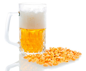 Beer and salted peanuts isolated
