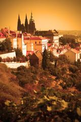 Wall Mural - Prague castle