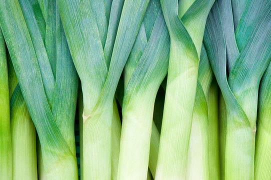 Lauch, Porree, frisches Gemüse