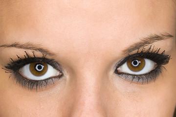 yeux regard profond