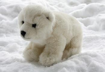 Poster Ijsbeer Polar bear in snow