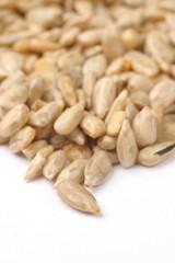 peeled sun flower seed close up or macro