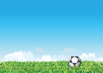 Vector. Green grass with soccer ball
