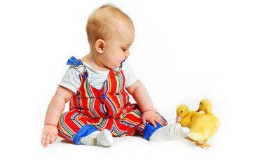 half-year a little boy and ducklings