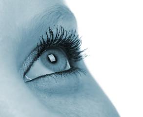 Female eye - blue tone