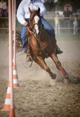 Horse race: Pole bending