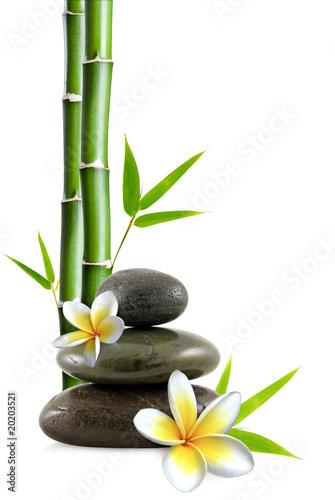 Fleurs de frangipanier galets zen et bambou photo libre for Image galet zen