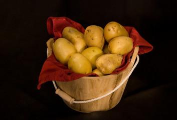 natura morta - patate