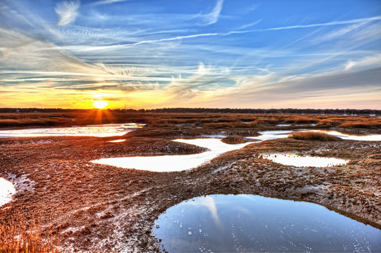 oyster beds, hdr
