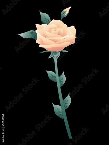 Rose Je T Aime Fleur Coup Foudre Amour Saint Valentin Cœur Coeur