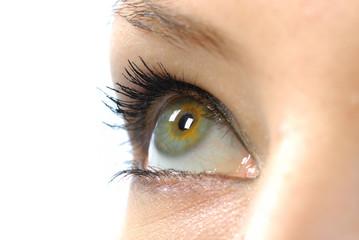 oeil gris vert jaune 3