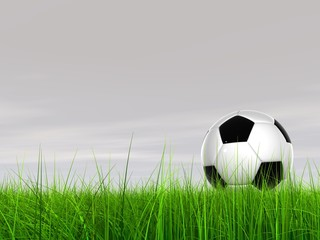 High resolution 3D soccer ball in green grass