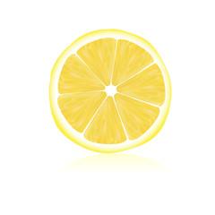 sliced lemon vector illustration