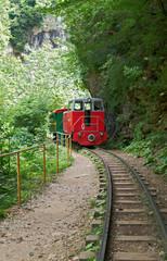 Locomotive with Coach on the Mountain Narrow-gauge
