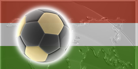 Flag of Hungary soccer