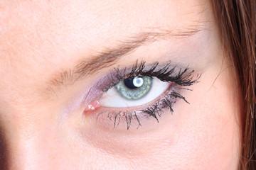 The macro beautiful female eye