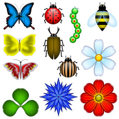 12 elements of the nature (the butterfly, flowers, insects)