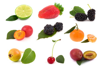 Collection fruit