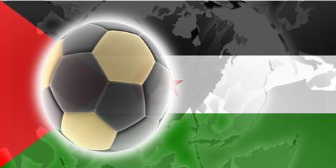 Flag of Western Sahara soccer
