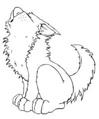 Wolf, jaulen, jammern, heulen, husky, schlittenhund
