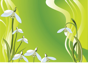 background with spring snowdrops