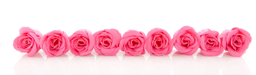Row pink soap roses