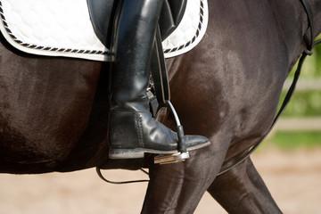 Keuken foto achterwand Paardrijden Dressurreiten