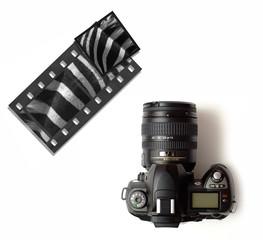 Digital slr or slide 35mm camera