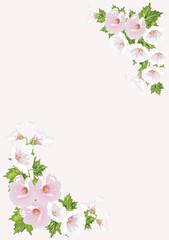 pink campanula floral corners
