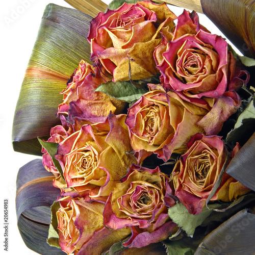 fleurs s ch es photo libre de droits sur la banque d 39 images image 20654983. Black Bedroom Furniture Sets. Home Design Ideas