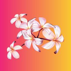 Exotic flower realistic vector illustration
