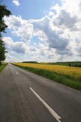 Landstraße im Sommer