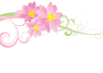 pink flowers curves vector decor