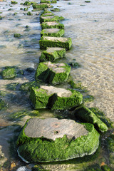 Large stepping stones across a stream.