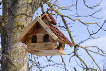 Vogelhaus mit Frühlingsgefühlen