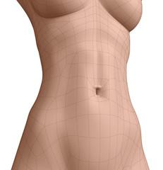 Polygonal belly button