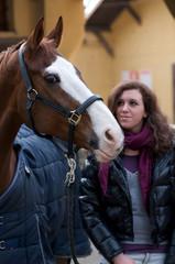 cavallo Amico 52