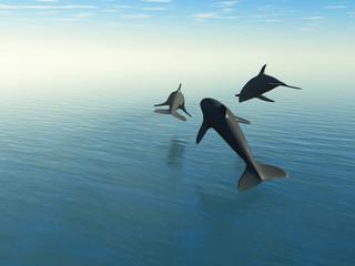 Photo sur Aluminium Dauphins Three dolphins above the sea