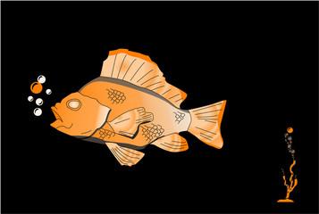 pesce 1