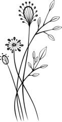 black art, Blumen, Blüten, Ranke, floral, Gräser