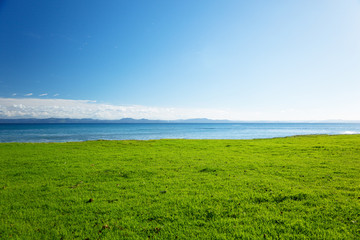 Fotomurales - Caribbean sea and field of green grass