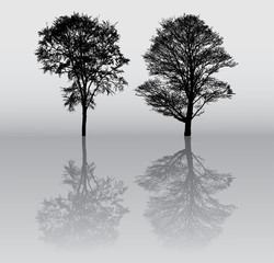 Two beautiful winter tree silhouettes, highly detailed.